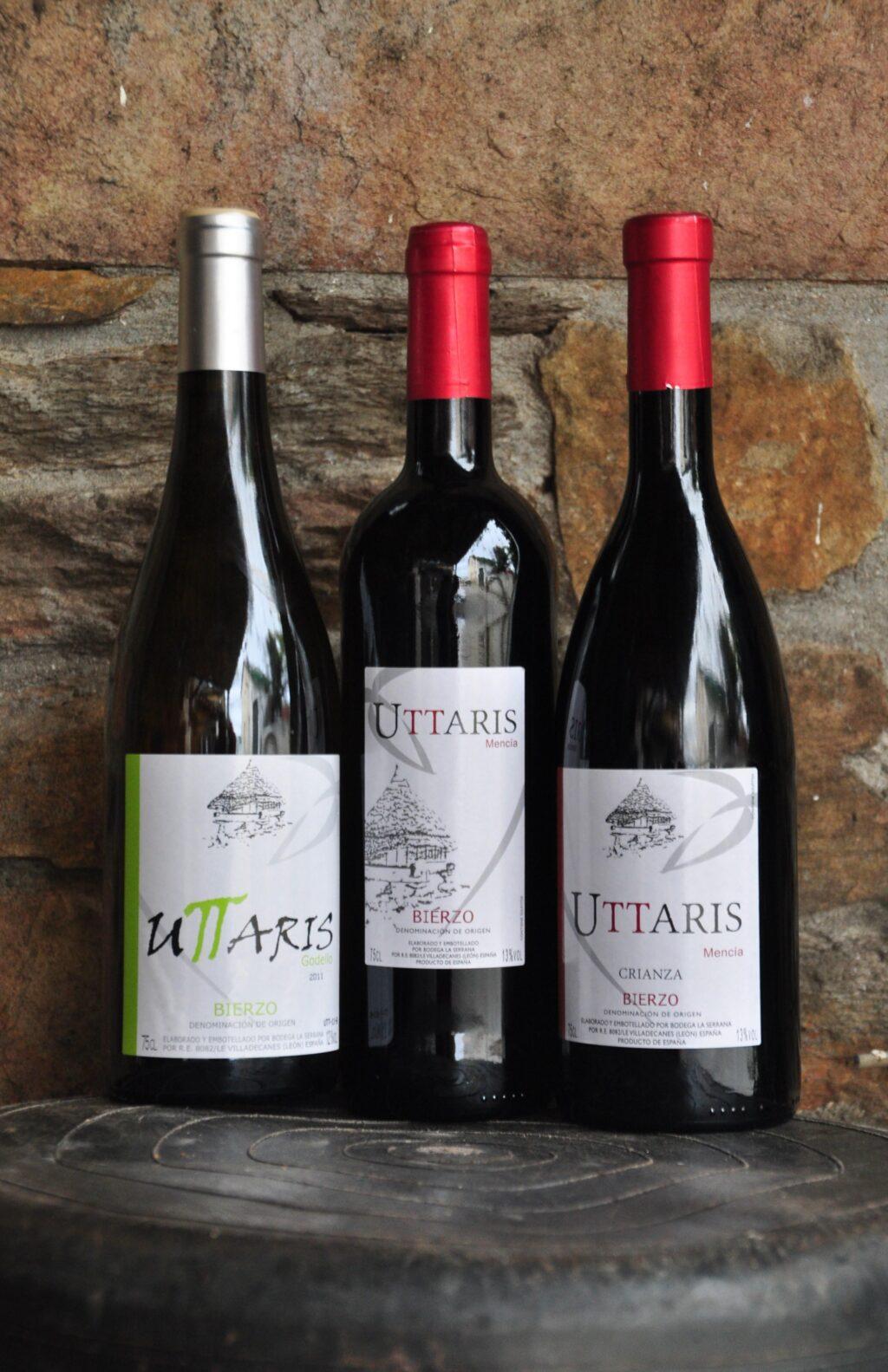 wines from bierzo